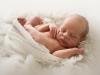 Lidköping Nyföddfotografering Nyfödd Bebis
