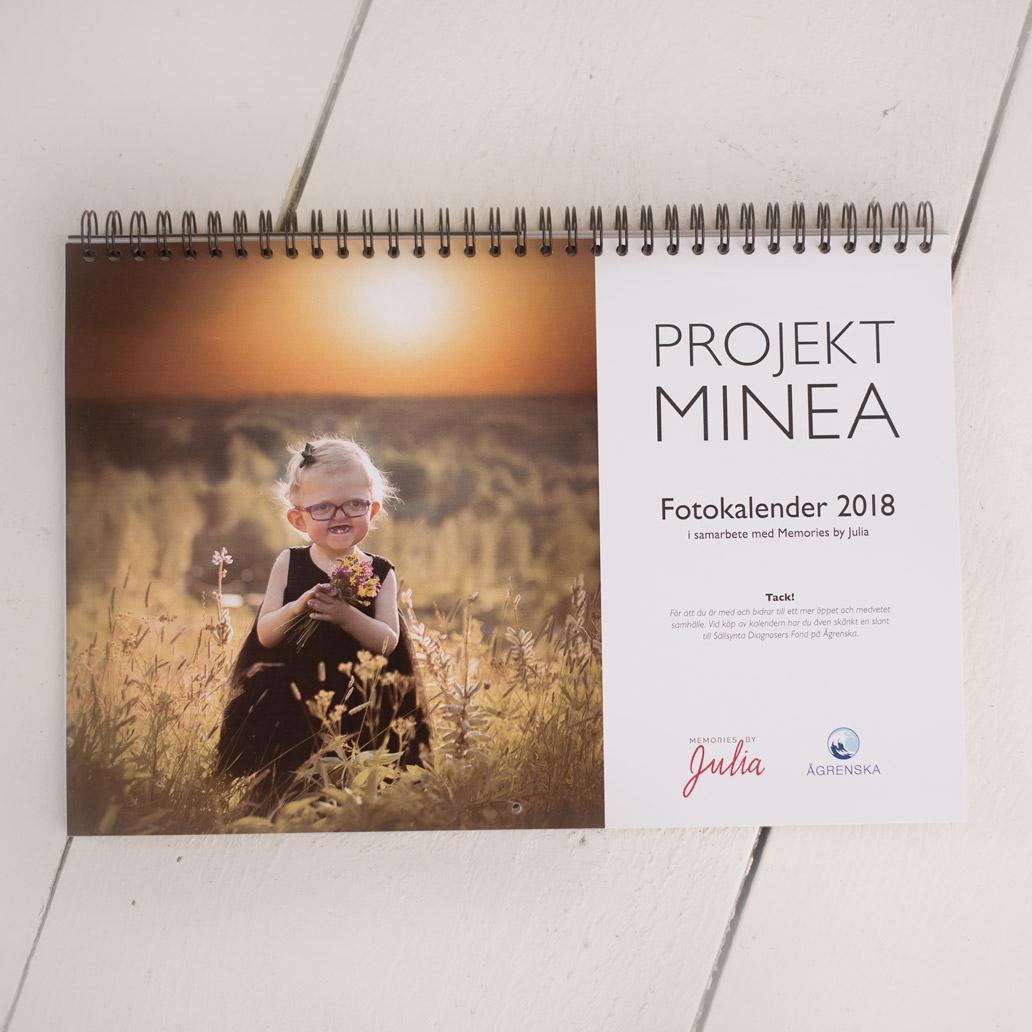 kalender projekt minea 2018