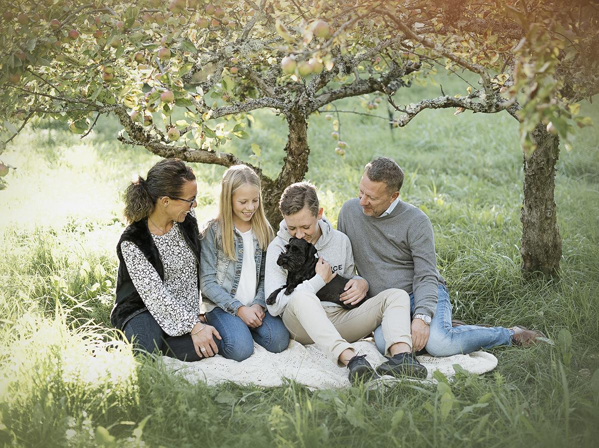 En familjefotografering på Ryds ängar i skövde i en äppelodling